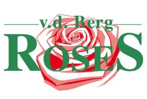 Berg RoseS